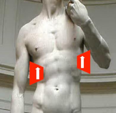 renal ultrasound sensor position view two
