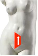sensor position pregnancy test