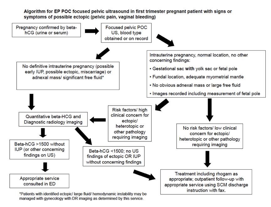 algorithm ultrasound pregnancy