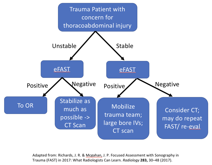 FAST exam ultrasound summary