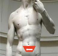pelvic ultrasound sensor position