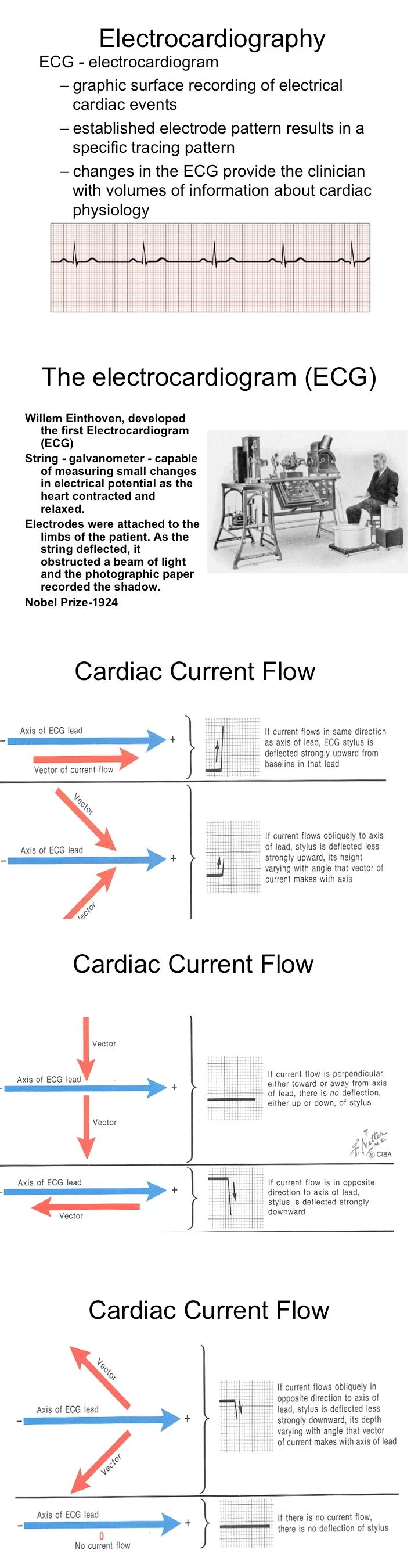 electrocardiology